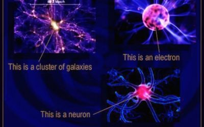 Electrons, galaxies and neurons